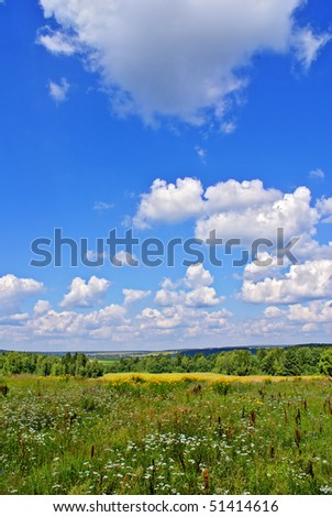 Summer landscape with blue cloudy sky, green grass, flowers and trees
