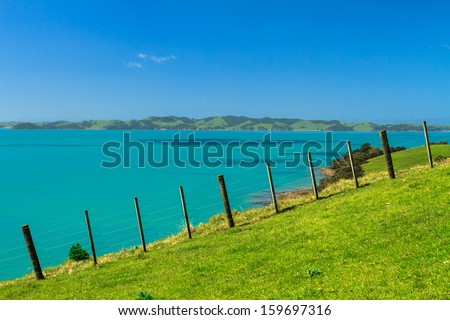Summer Landscape with Green Field and Blue Sky on the Pacific Sea Coast, Duder Regional Park, Auckland Region, New Zealand