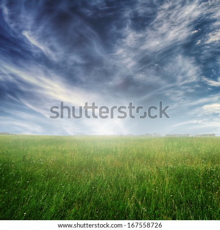 Summer landscape with green grass and blue dramatic sky - stock photo