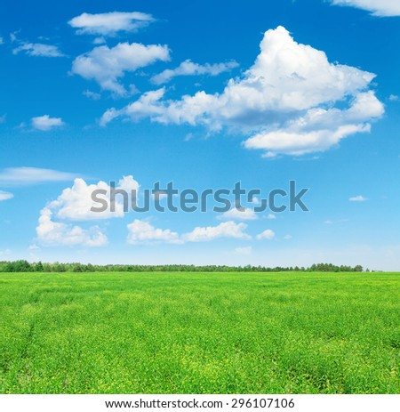 Summer landscape with green grass field and blue sky with clouds - stock photo