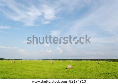 Summer landscape with haystacks on the field. - stock photo