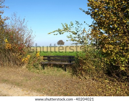 summer landscape with old bench seat - stock photo