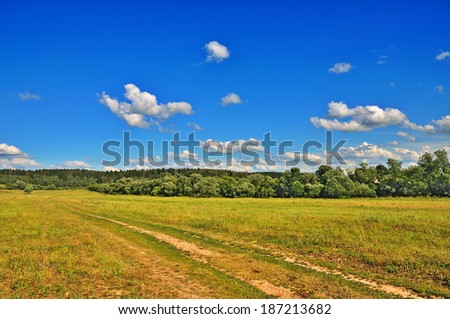 Summer landscape with rural way, wonderful cloudy sky, trees and grass
