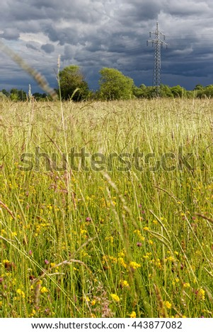 Summer meadow with a pylon and a dramatic clouded sky