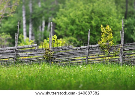 Summer meadow with flowers and a wooden fence in the countryside, Sweden - stock photo