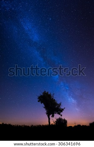 Summer Milky Way rises over lonely tree - stock photo