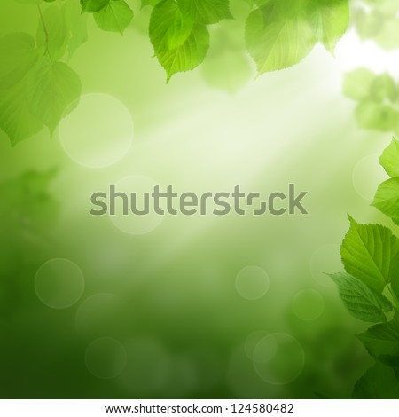 Summer morning - abstract background with leaves - stock photo
