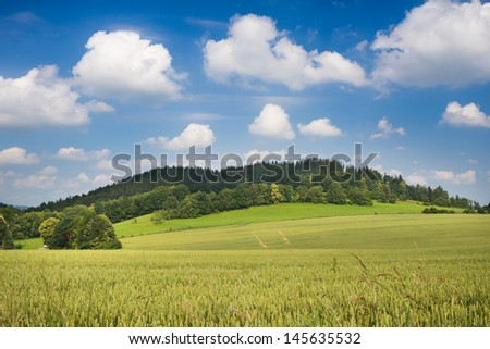 Summer morning landscape with grain on a meadow, small hill and blue sky with clouds - stock photo