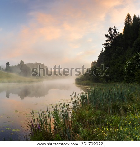 Summer morning on the edge of the lake.North Poland/Summer morning landscape - stock photo