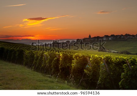 Summer morning sunrise in the French vineyard region of Alsace - stock photo