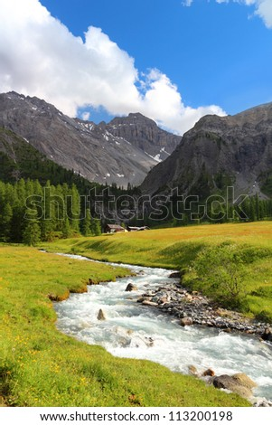 Summer mountain landscape and green meadow with stream in the foreground, Sertig Dorfli, Davos, Switzerland
