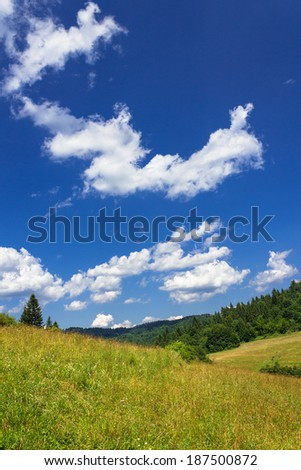 Summer mountains landscape