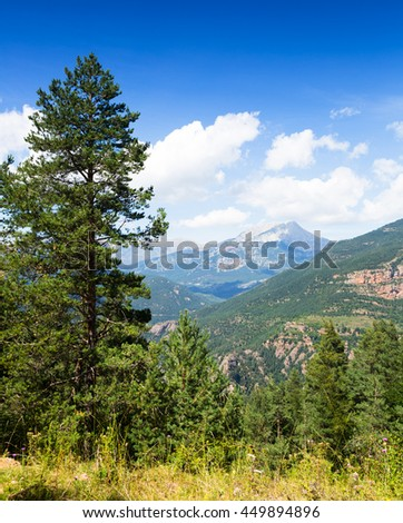 Summer mountains landscape with pine  - stock photo