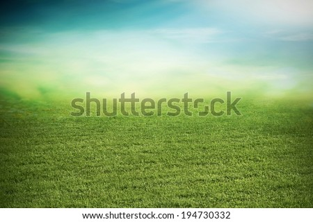 Summer natural grass field in dusk - stock photo