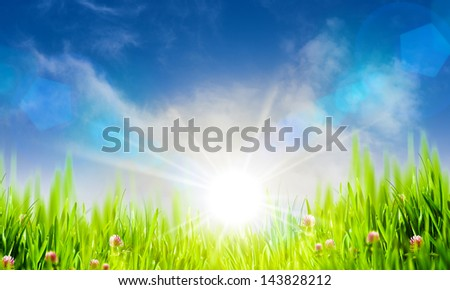 Summer natural landscape with copy space for your design - stock photo