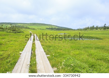 Summer of Mt. Hachimantai, Iwate prefecture, Japan - stock photo