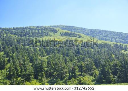 Summer of Mt. Moriyoshizan, Akita Prefecture, Japan - stock photo