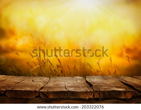 Summer or autumn background. Empty tabletop layout in sunset afternoon. Wood display - stock photo