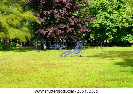 summer park with green lawn - stock photo