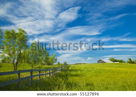 Summer pasture with blue skies and clouds. Space for text - stock photo