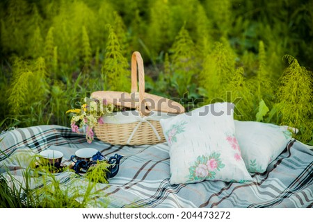 summer picnic - stock photo