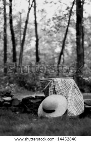 summer picnic in black & white with softer focus - stock photo
