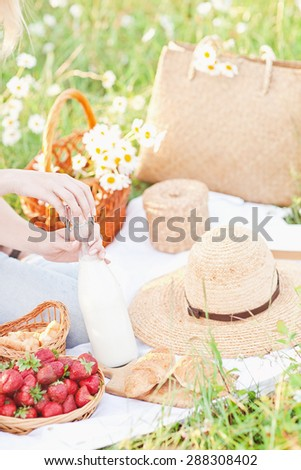 Summer picnic in camomile field in Crimea region  - stock photo