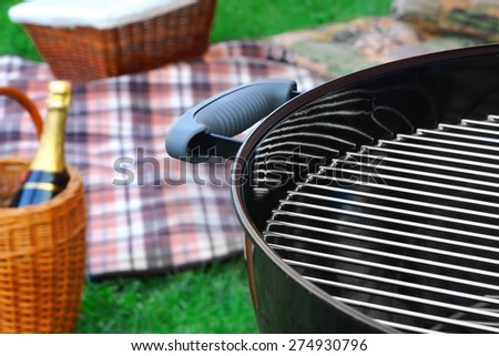 Summer Picnic Scene On The Grass Background