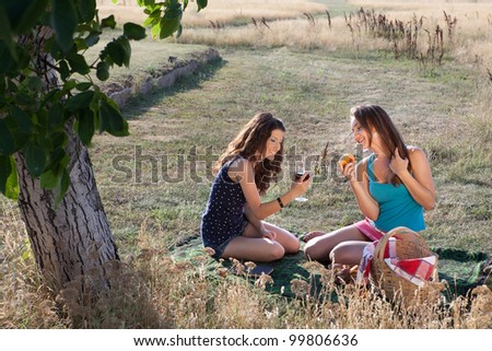 Summer picnic scene with two women sharing wine and peaches - stock photo