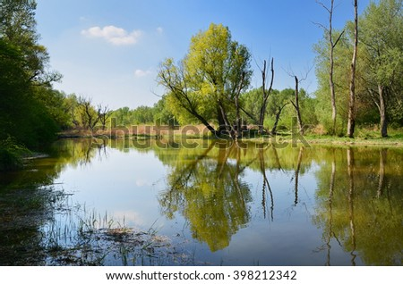 summer river scene with beautiful green trees and clean blue water in Slovakia - stock photo