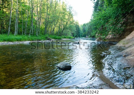 Summer river with reflections in Gauja National Park in Latvia