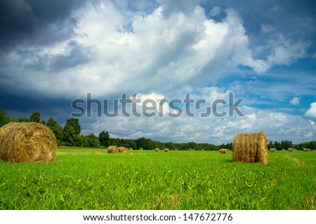 summer rural landscape with a field and hay - stock photo