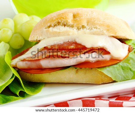 Summer sandwich.  Pack a few in your picnic basket for the fourth July or outdoor celebration and everyone, including the kids, will be your best friend - stock photo