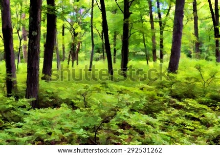 Summer scene of the lush green woods in the Poconos of Pennsylvania - transformed into a colorful digital painting - stock photo