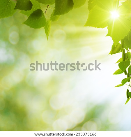 Summer seasonal backgrounds for your design - stock photo