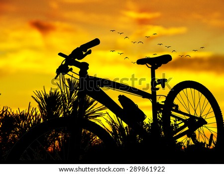 Summer sports in nature - stock photo