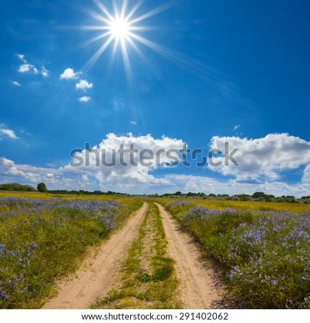 summer steppe scene - stock photo