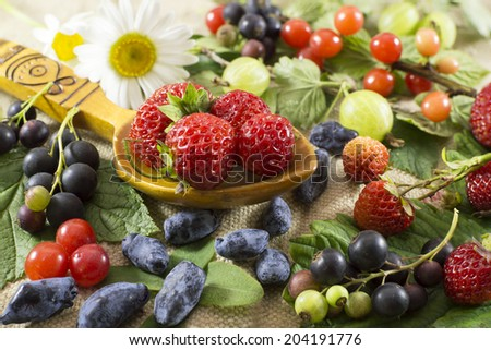 Summer still life with berries and flowers - stock photo