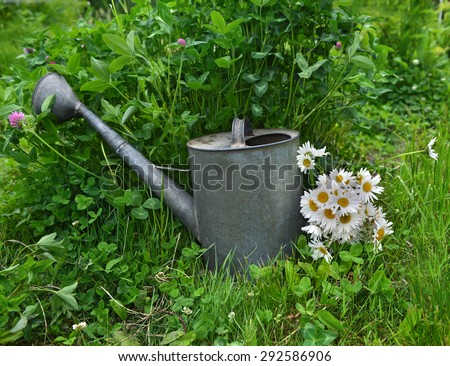 Summer still life with old watering can and daisy flowers against grass background - stock photo