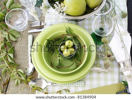 Summer table setting in green - stock photo