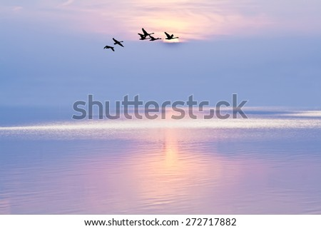 summer vacation on the coast - stock photo