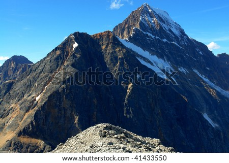 Summer view of canadian rocky mountain and glacier from the hiking trail in edith cavell meadows, jasper national park, alberta, canada - stock photo