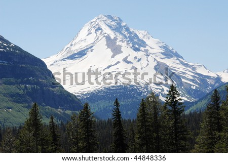 Summer view of mountain, forest and glacier in glacier national park, montana, usa - stock photo