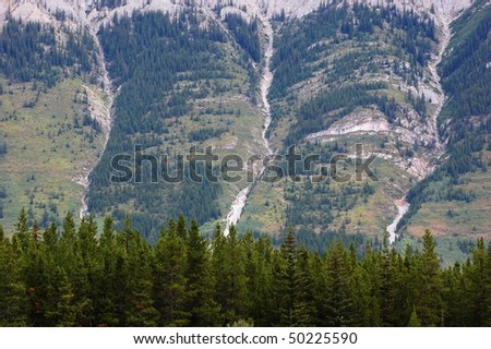 Summer view of rocky mountains and forests when hiking on burstall pass, kananaskis country, alberta, canada