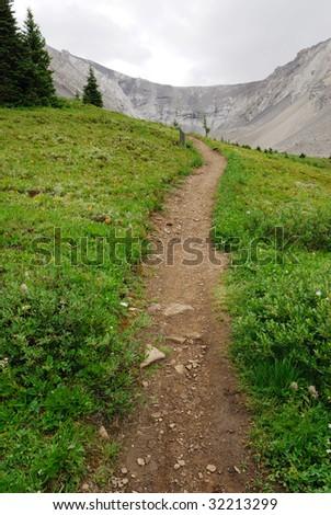 Summer view of winding hiking trail on alpine meadows at ptarmigan cirque, kananaskis country, Alberta, Canada - stock photo