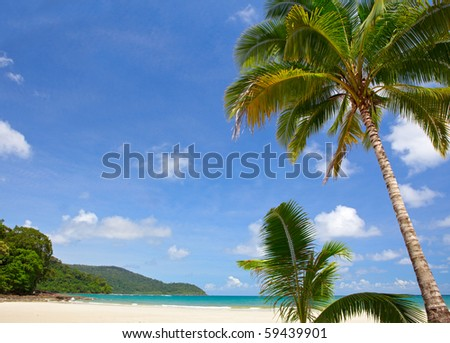 Summertime view - stock photo