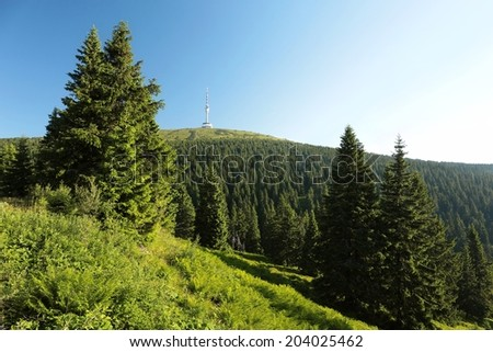 Summit of the mountain Praded (1491 m) in the eastern Sudetes, Czech Republic. - stock photo
