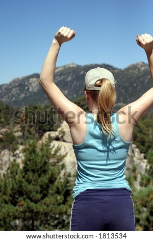 Summit Success - stock photo