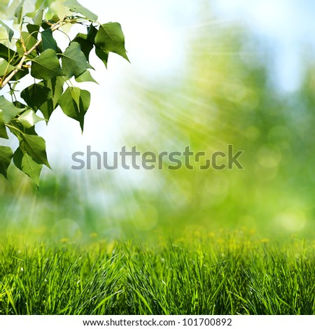 Sun beam. Abstract spring and summer backgrounds - stock photo