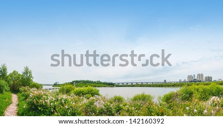 Sun Island west beach wetland park, located in Harbin City, Heilongjiang Province, China.